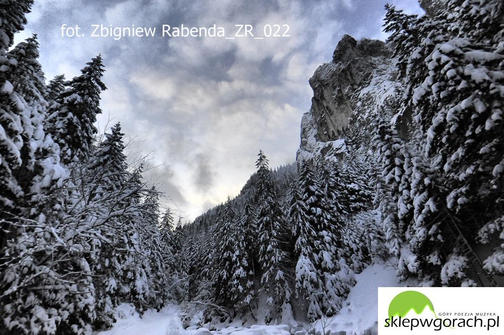 ZR_022